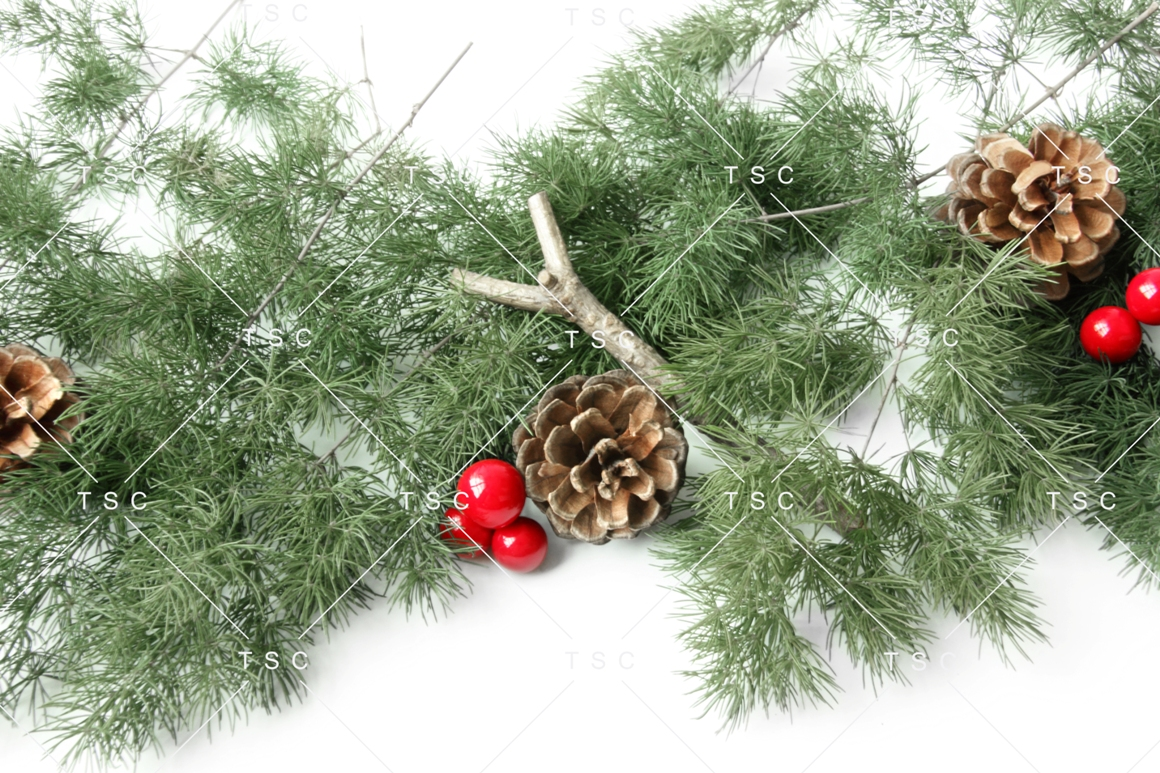 Christmas Stock Bundle / Background Image / Red / Green example image 9