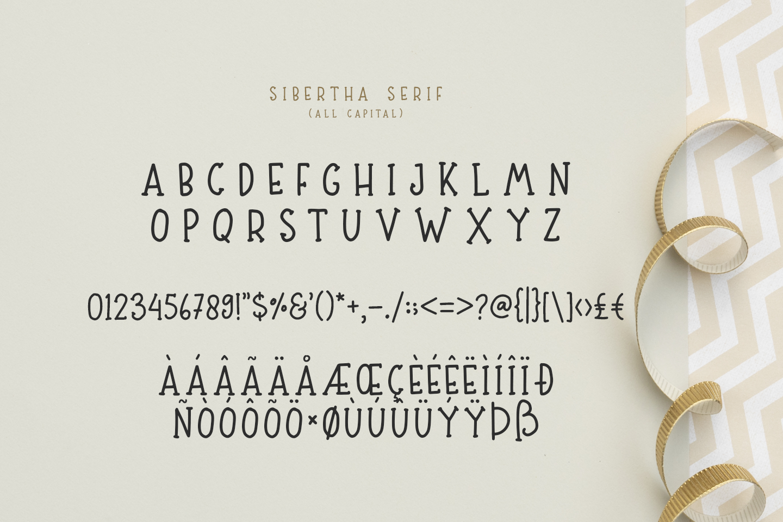 Sibertha - Font Duo - example image 11