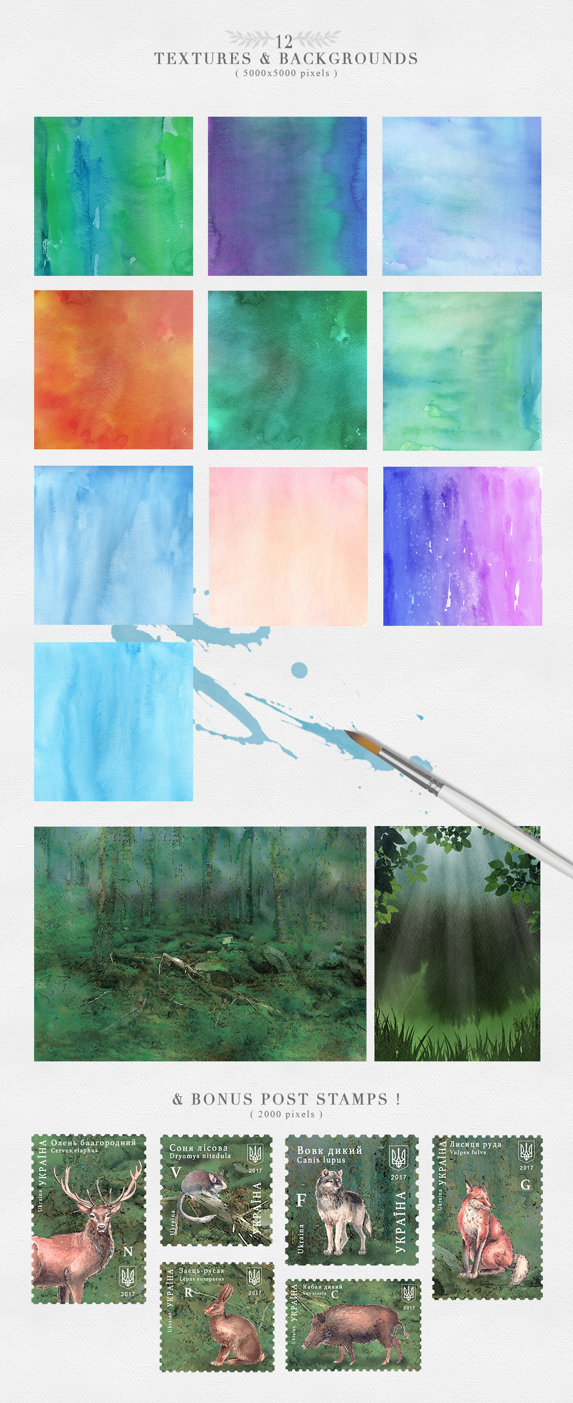 Wild Forest Watercolor Collection example image 6