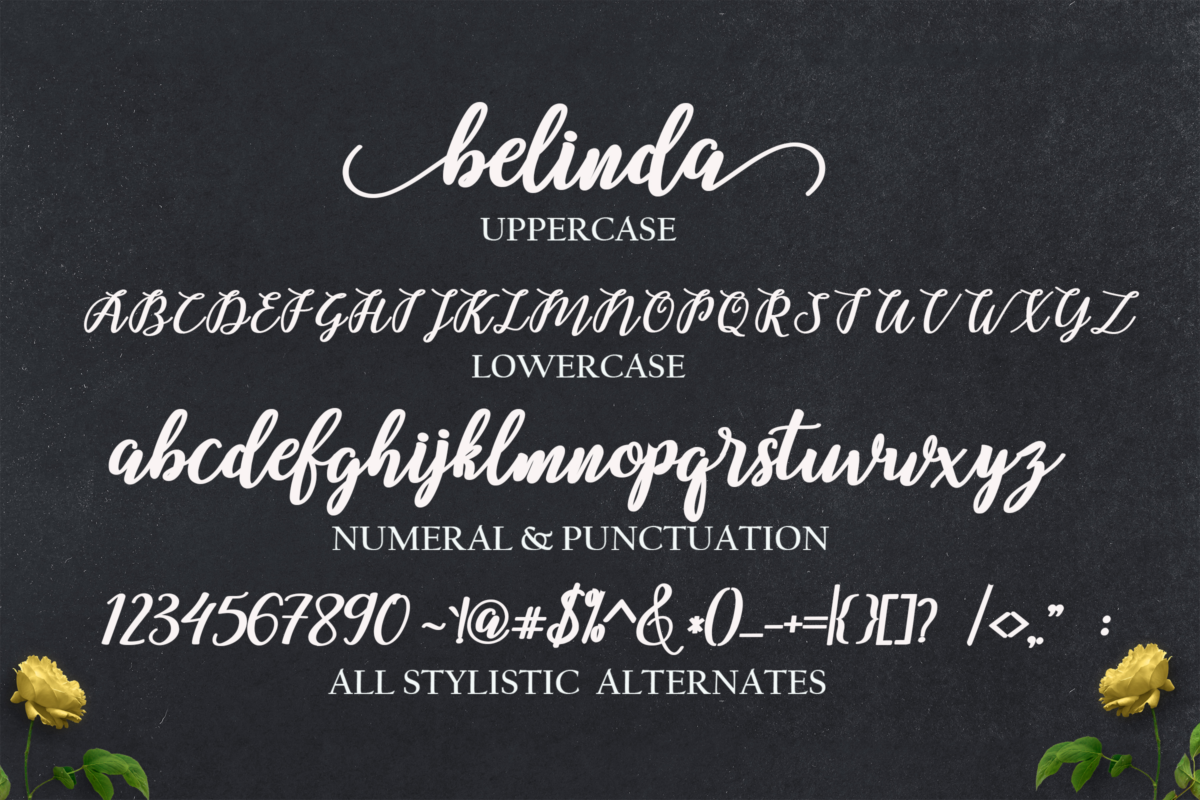 THE MINI FONT BUNDLE BY MRLETTERS VOL 3 example image 4