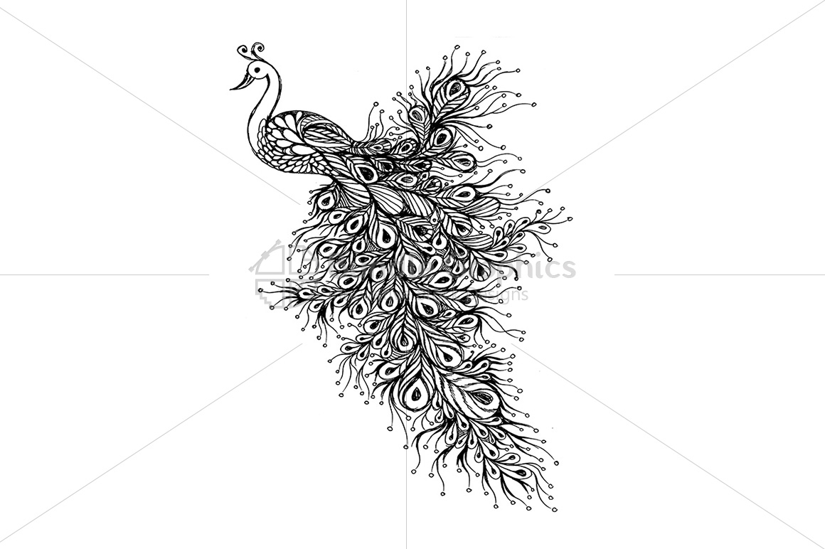 Peacock - Handmade Ink Graphics example image 2