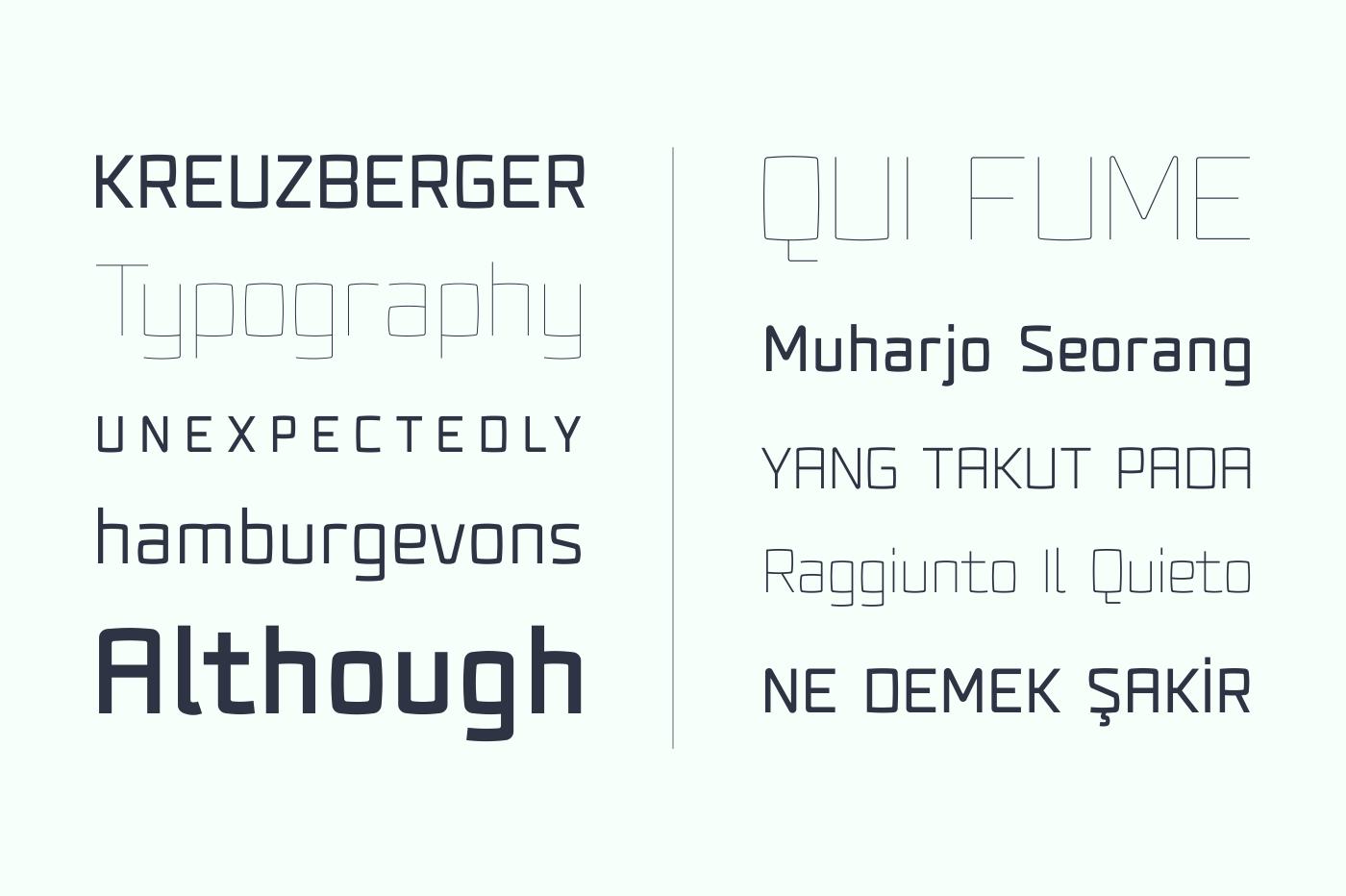 Fenton Typeface Family [75% OFF] example image 4