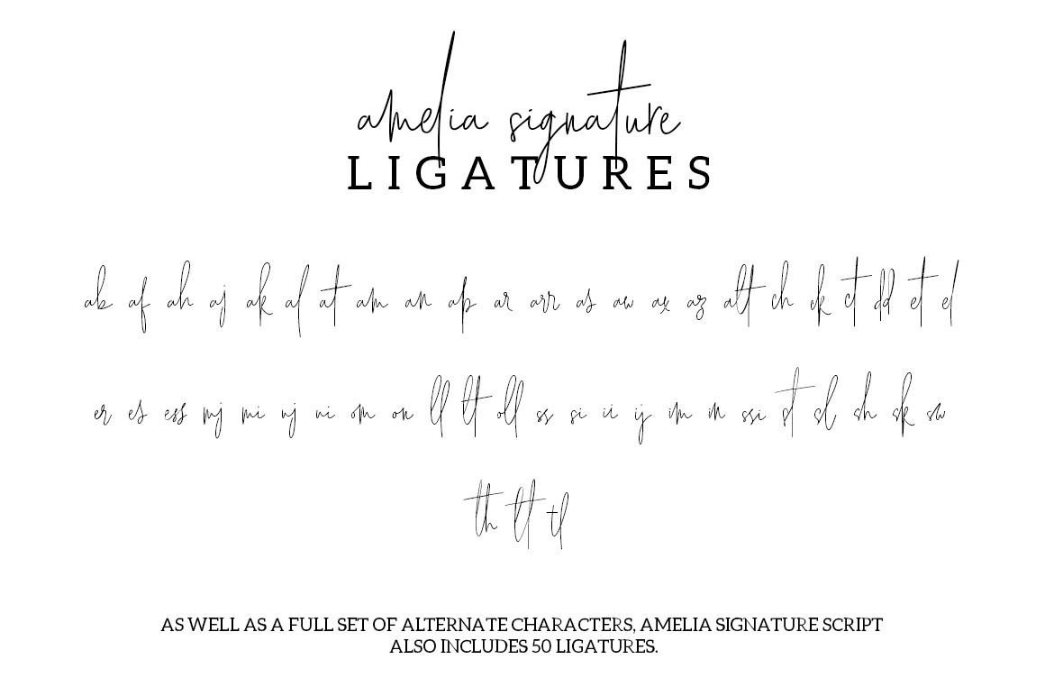Amelia Signature example image 6