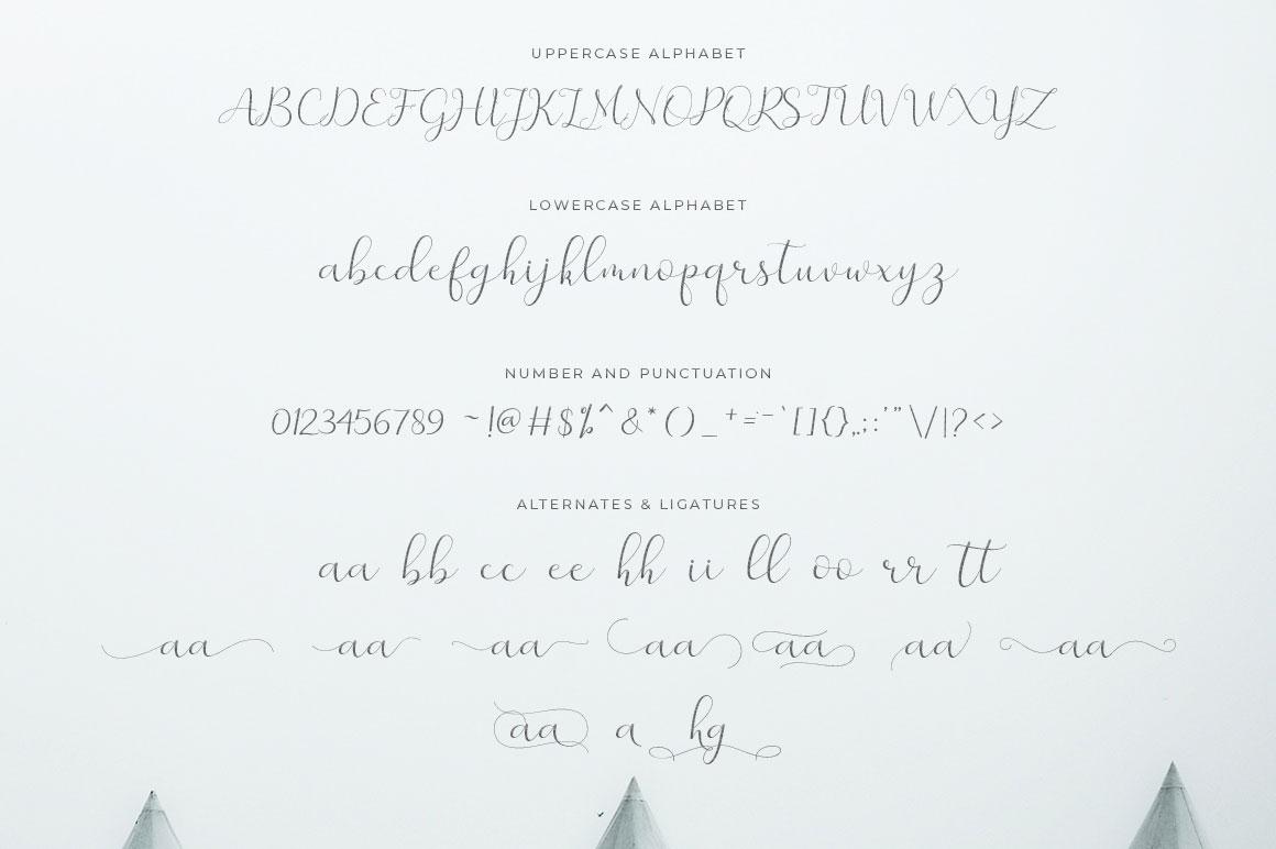 Merlin Script example image 7
