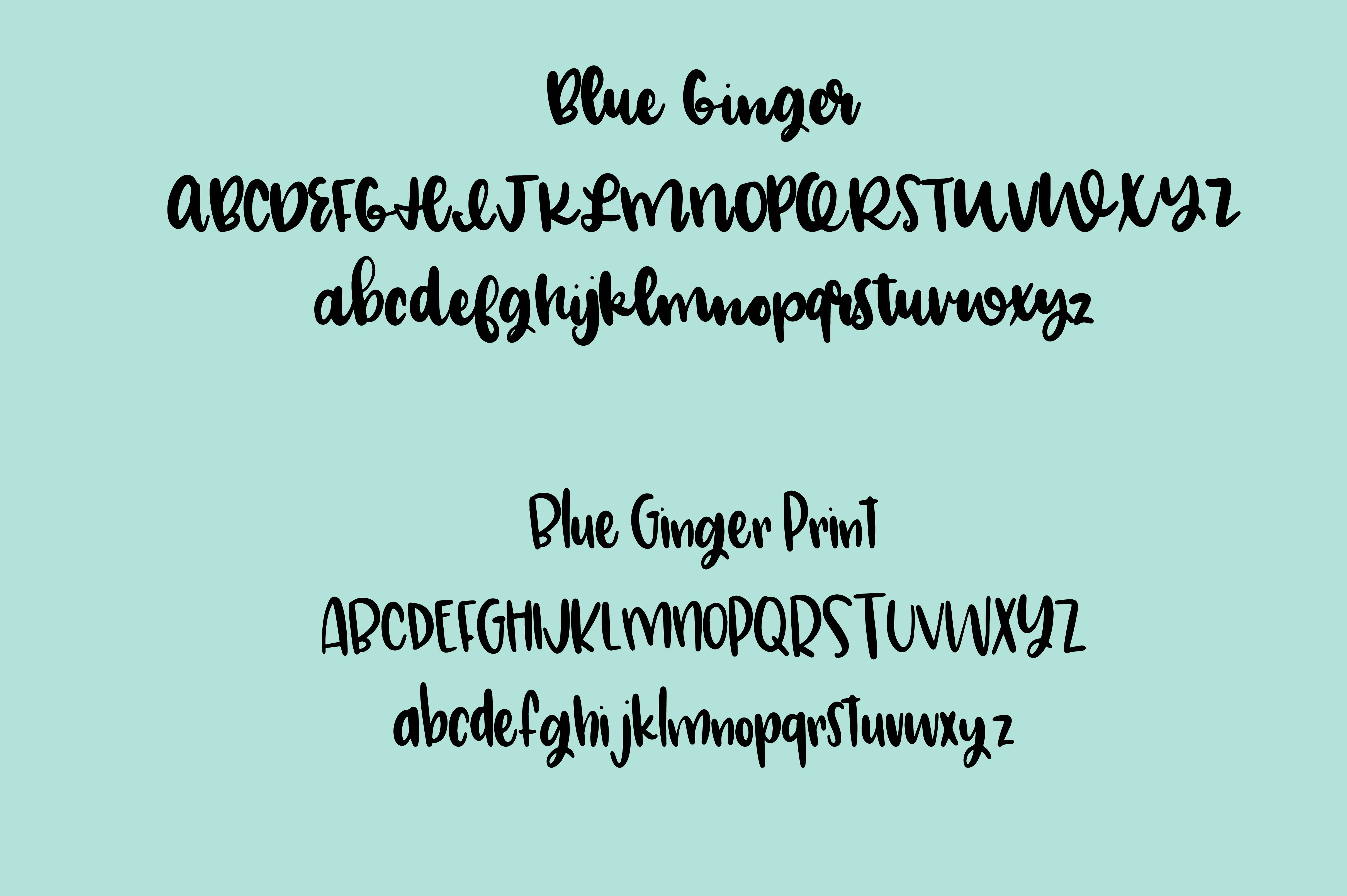 Blue Ginger Font Duo  example image 2