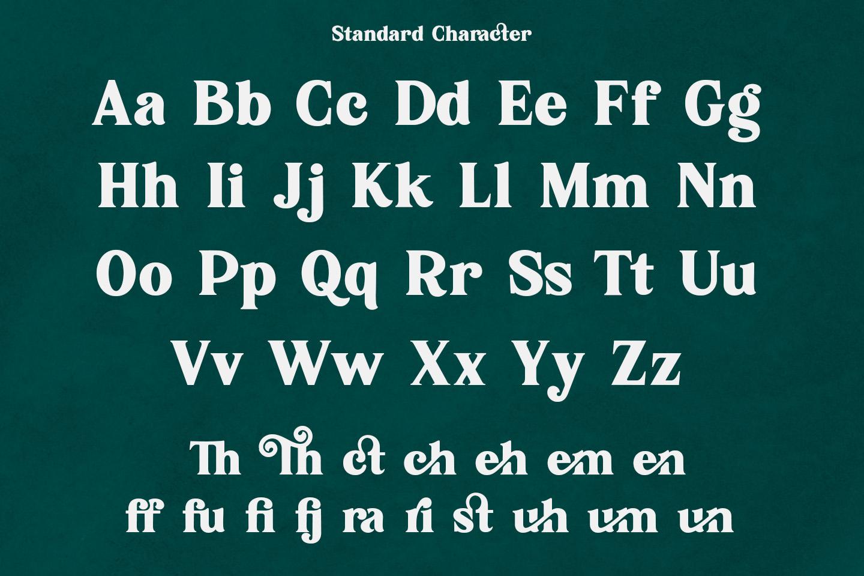 Karimun - Modern Serif Font example image 9