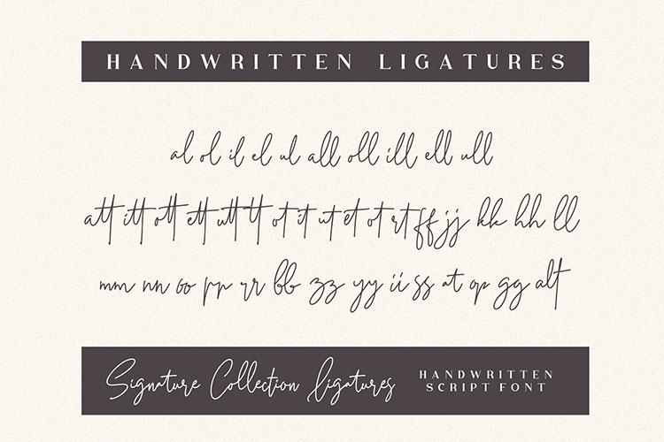 Petricia - Handwritten Script Font example image 6