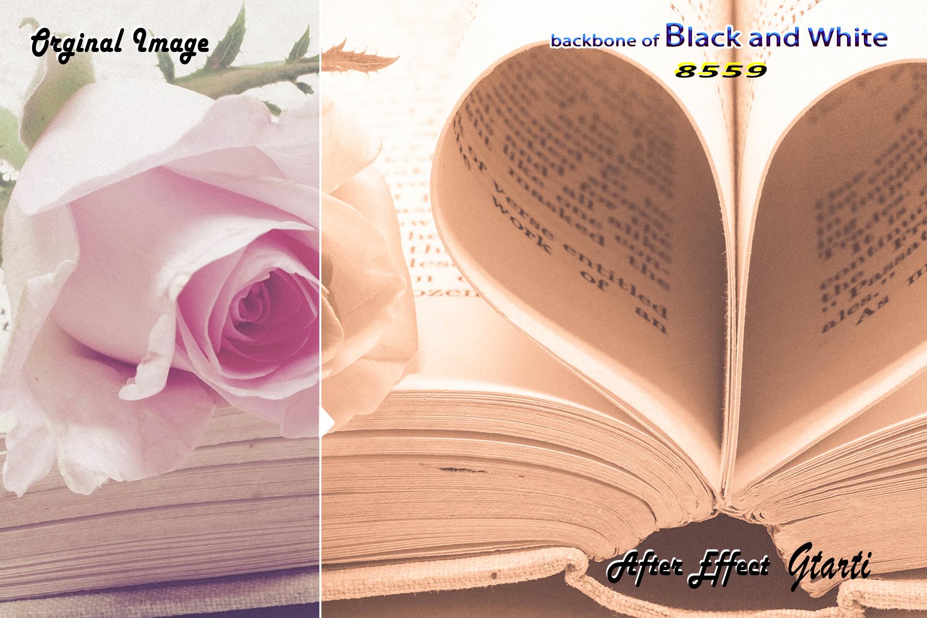 Backbone of Black and White Lightroom Presets example image 5