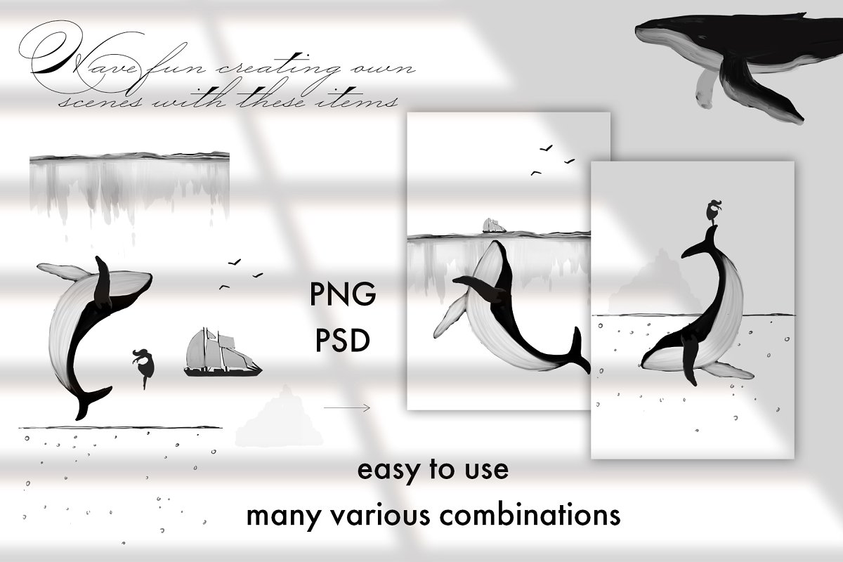 Black&White Whales Illustrations example image 3