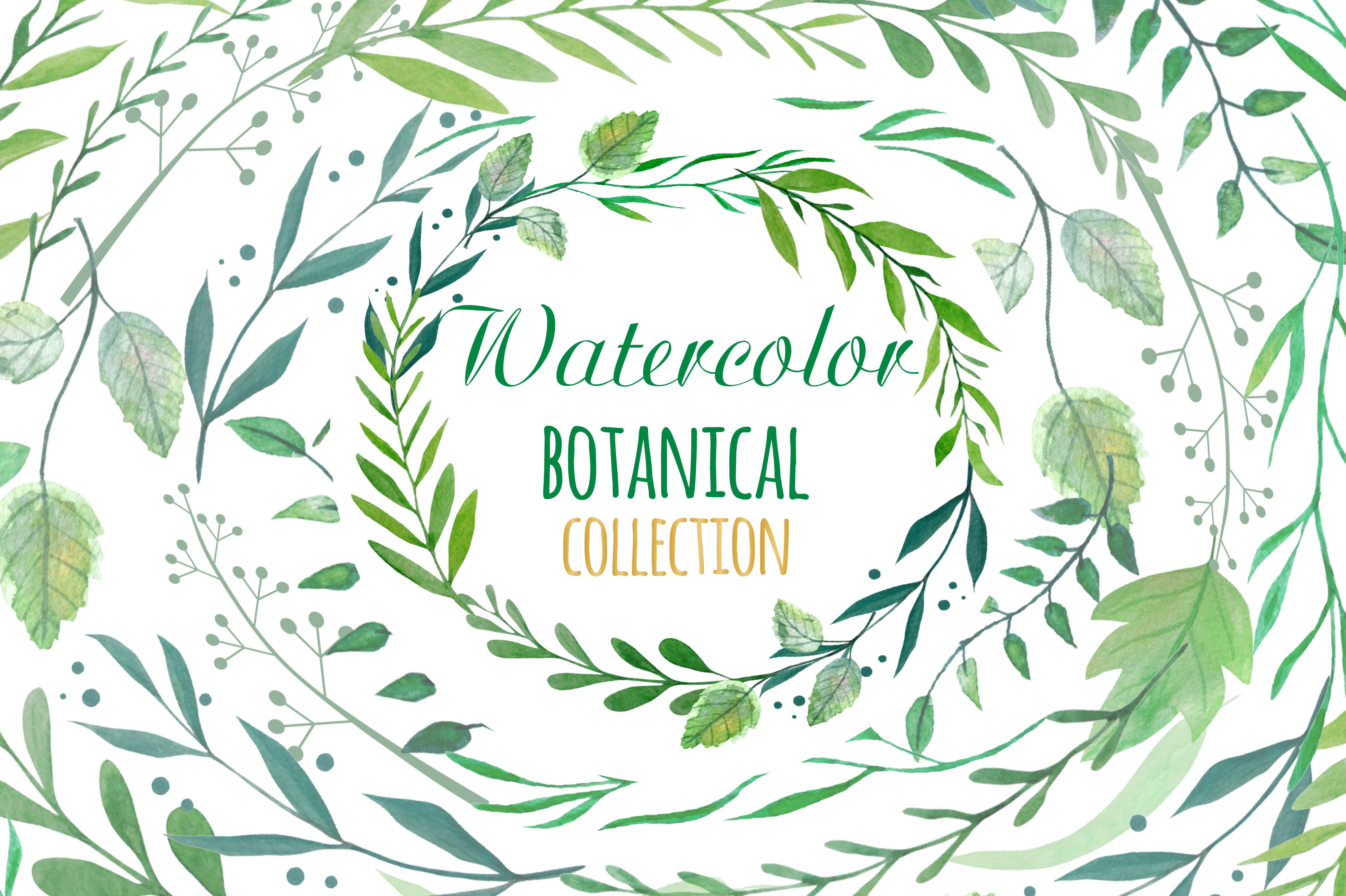 Botanical Watercolor Clipart  example image 1