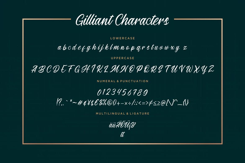 Gilliant Script Typeface example image 6