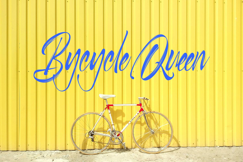 Selfakia Brush Font example image 6