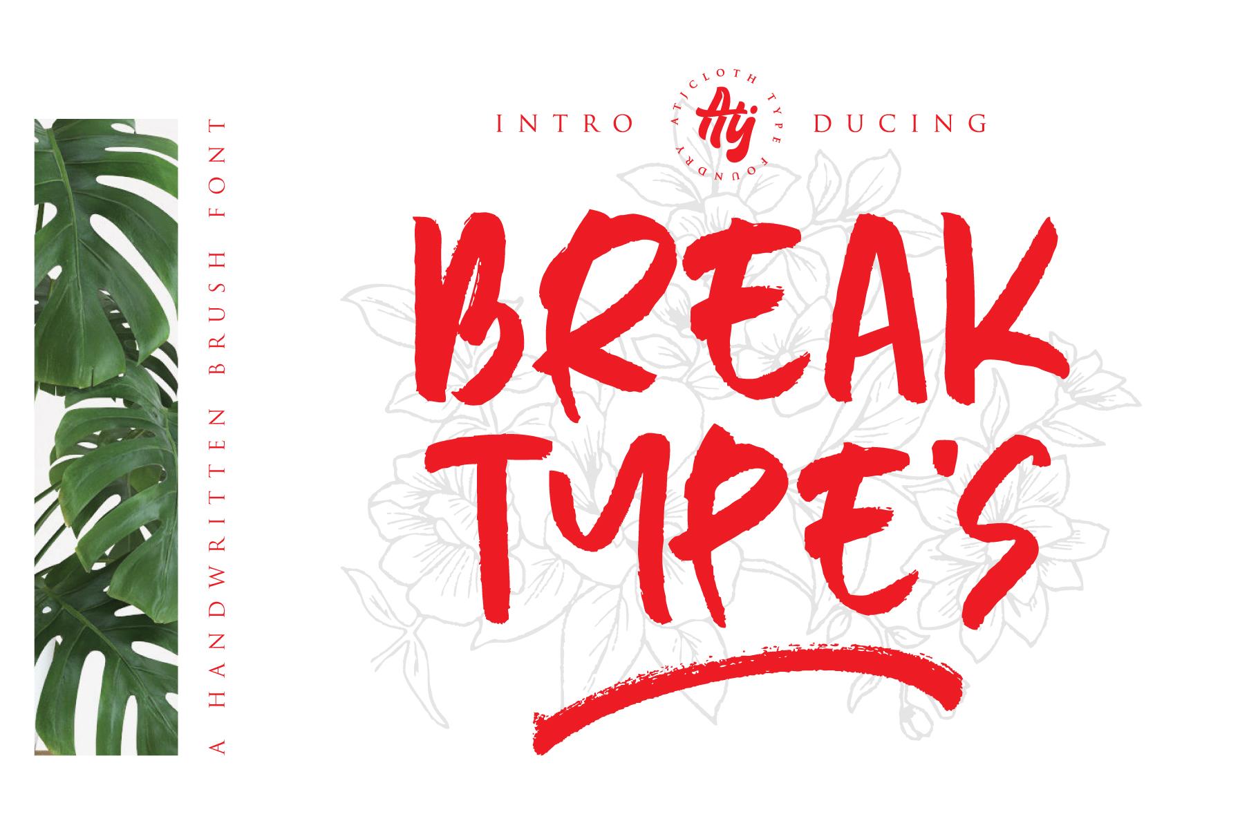 Break Types example image 1