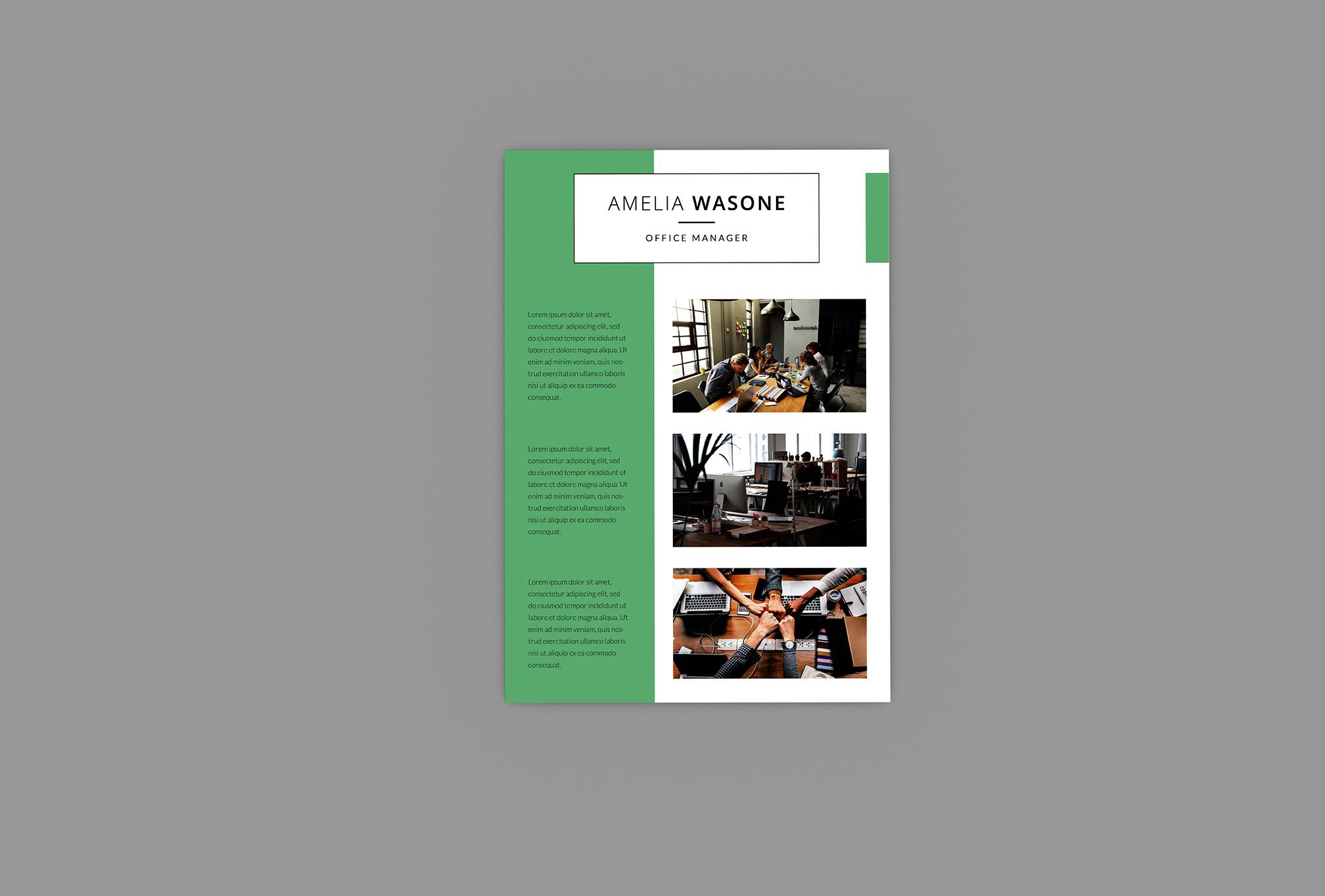 CV Vitality Resume Designer example image 4