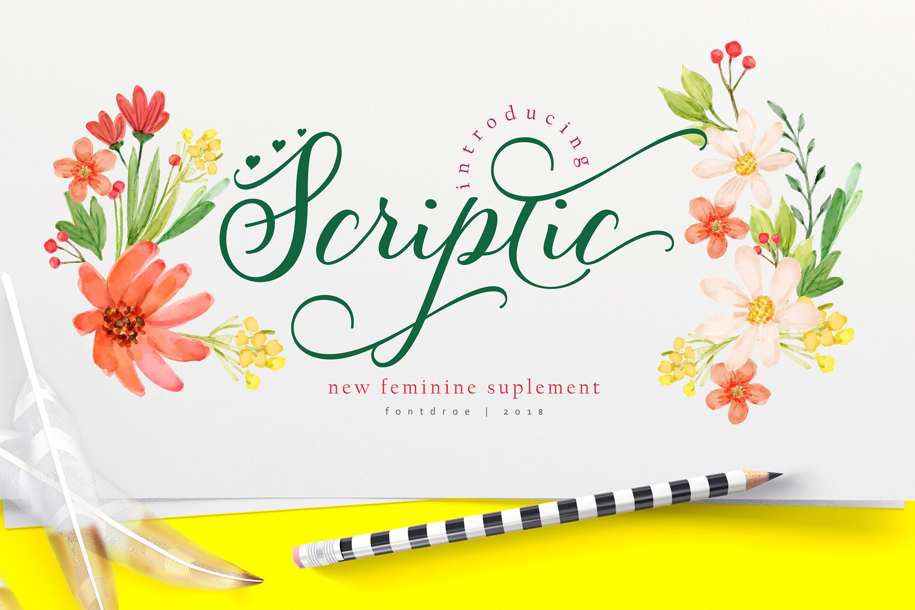 Scriptic example image 1