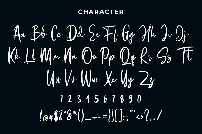Flossie Joelle Modern Script Font example image 6