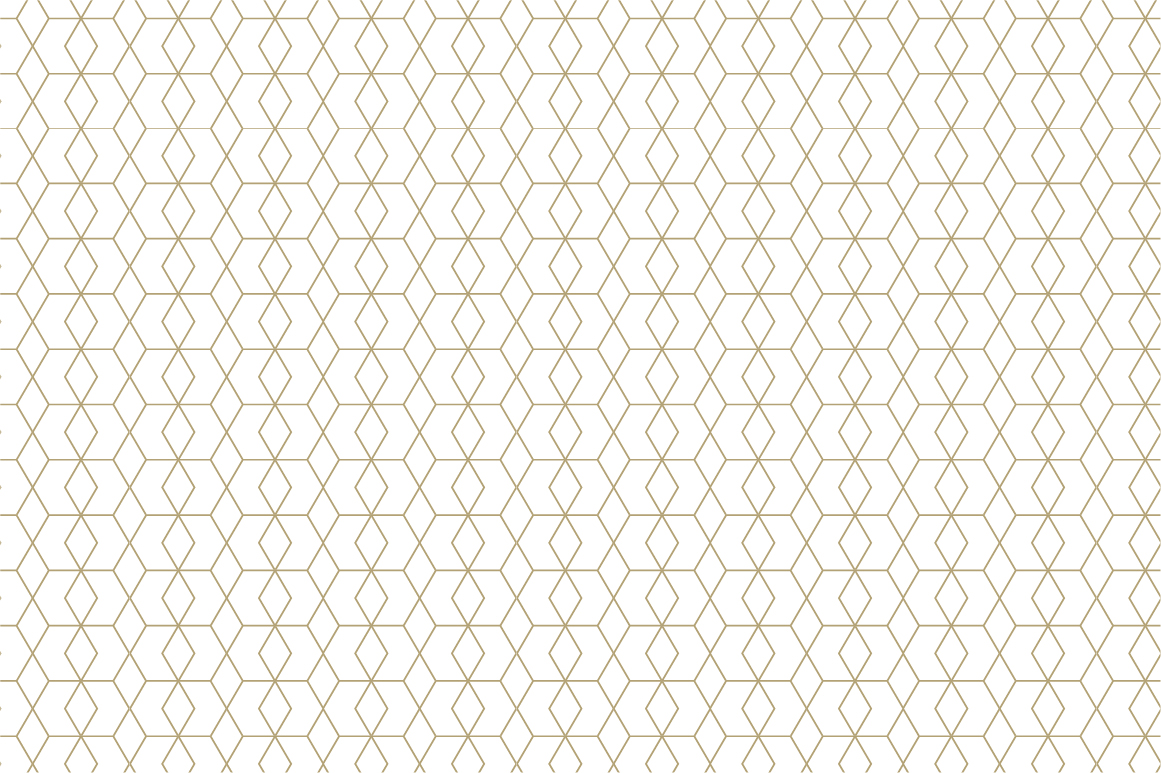 Ornamental seamless patterns. example image 13