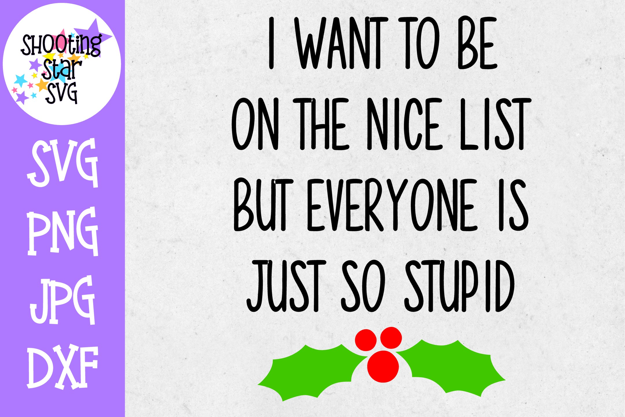 Want to be on Nice List Everyone is Stupid SVG - Christmas example image 1