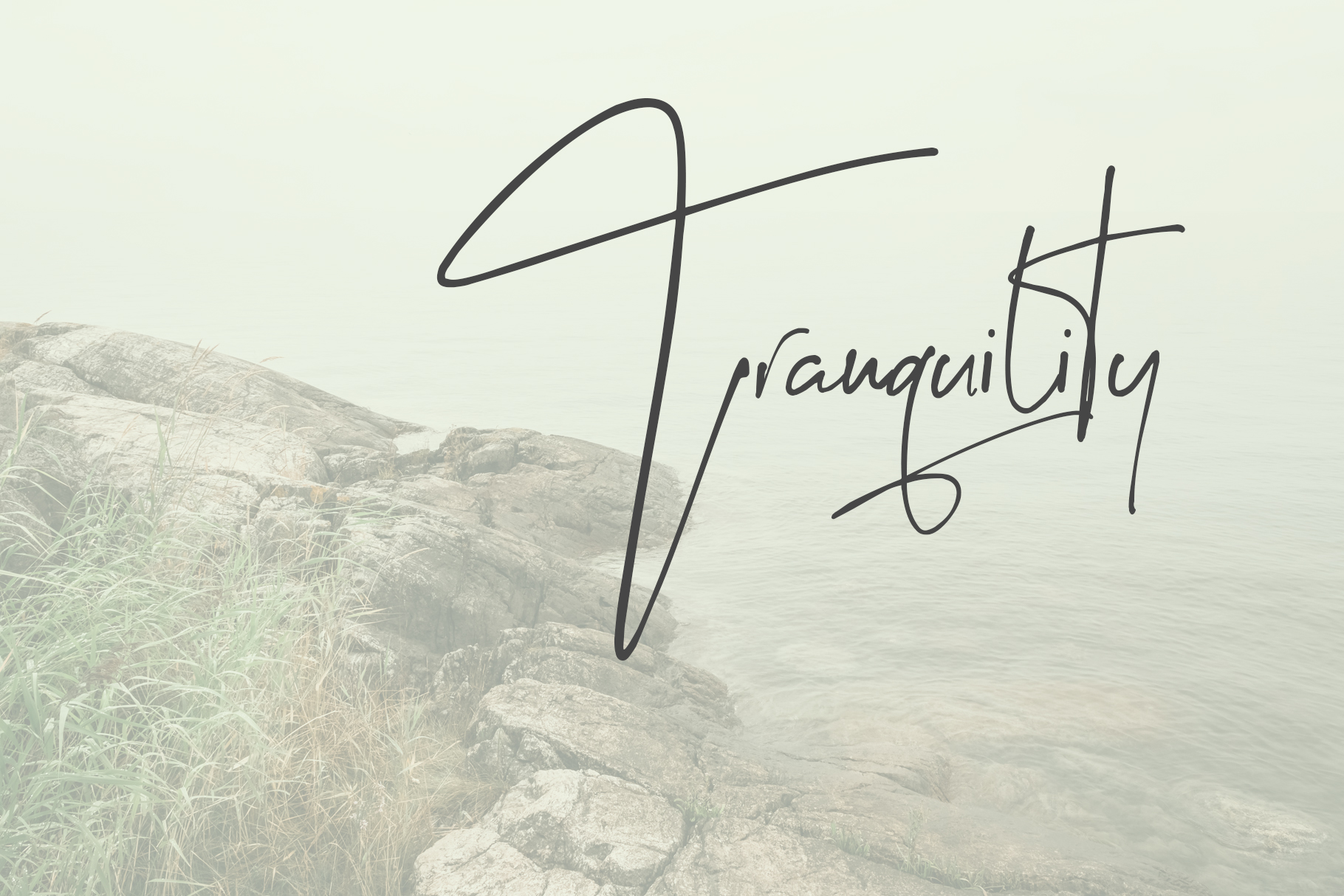Stylefinder signature font example image 11