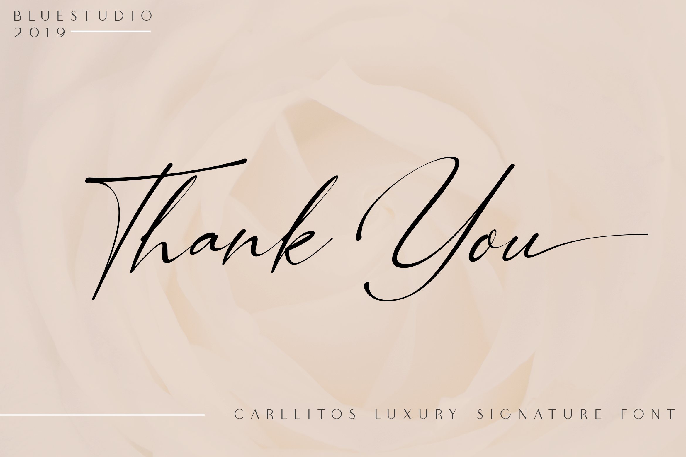 Carllitos // Luxury Signature Font example image 12