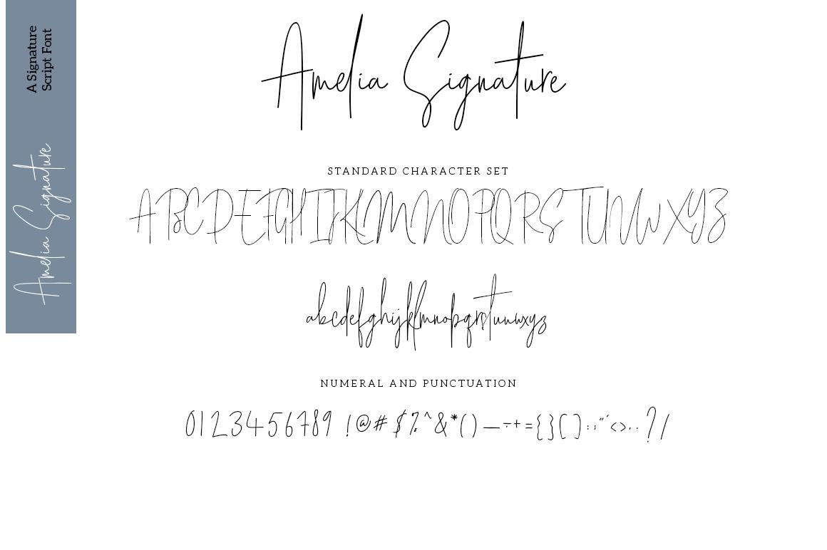 Amelia Signature example image 7
