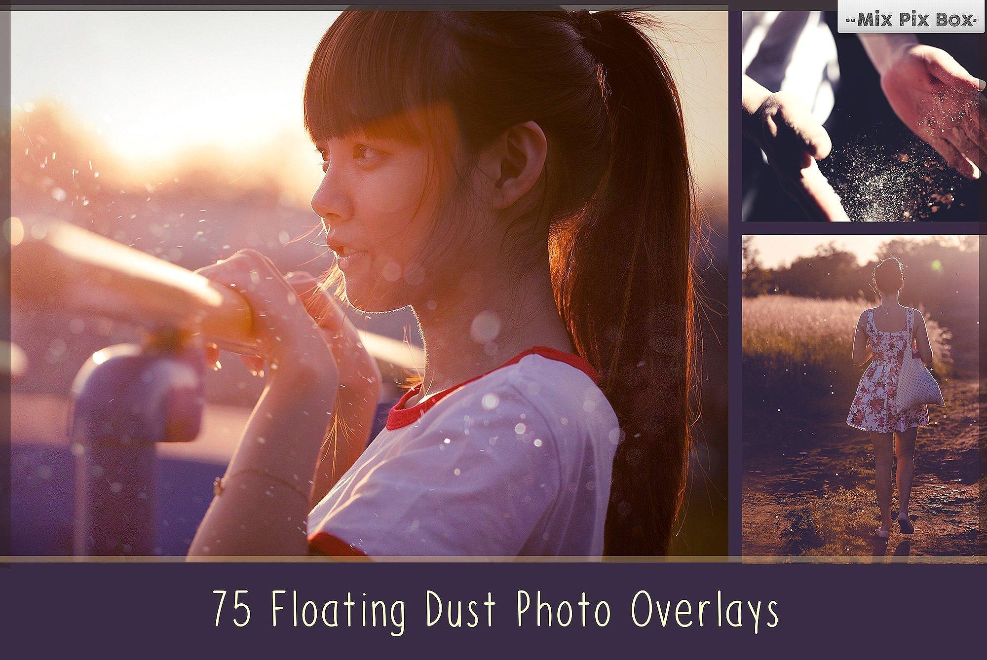 900 Photo Overlays Bundle example image 8