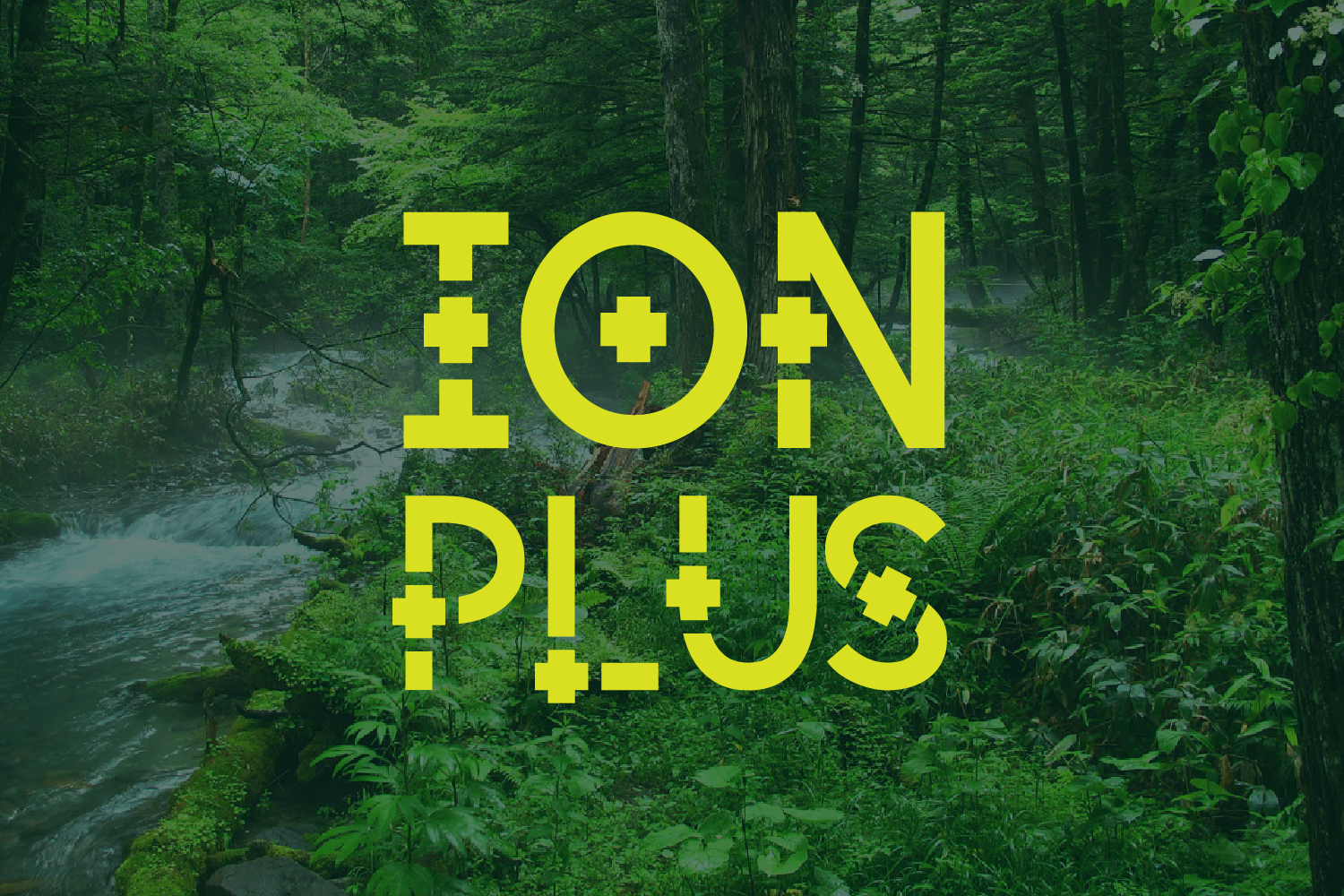 ION PLUS example image 3