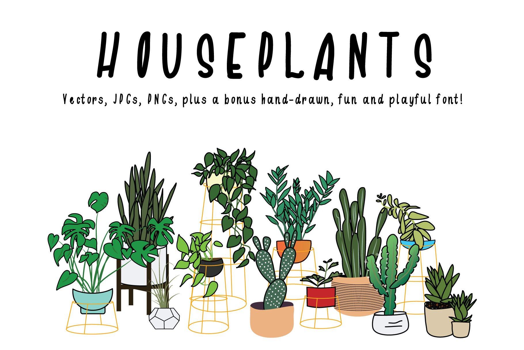 Houseplants Bundle example image 1