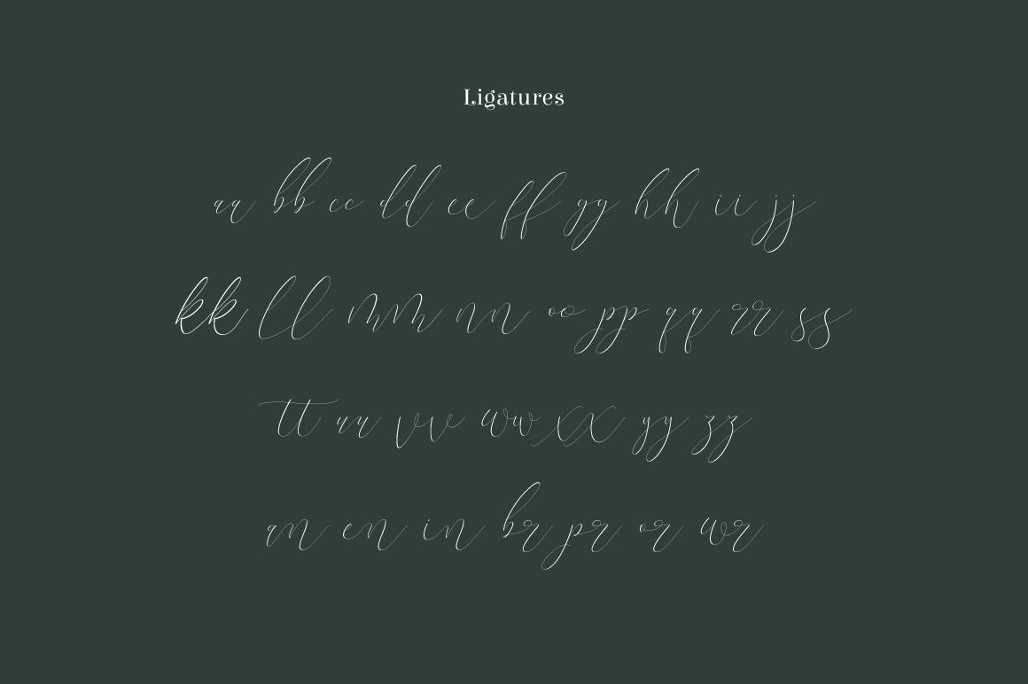 Terranika Typeface example image 2