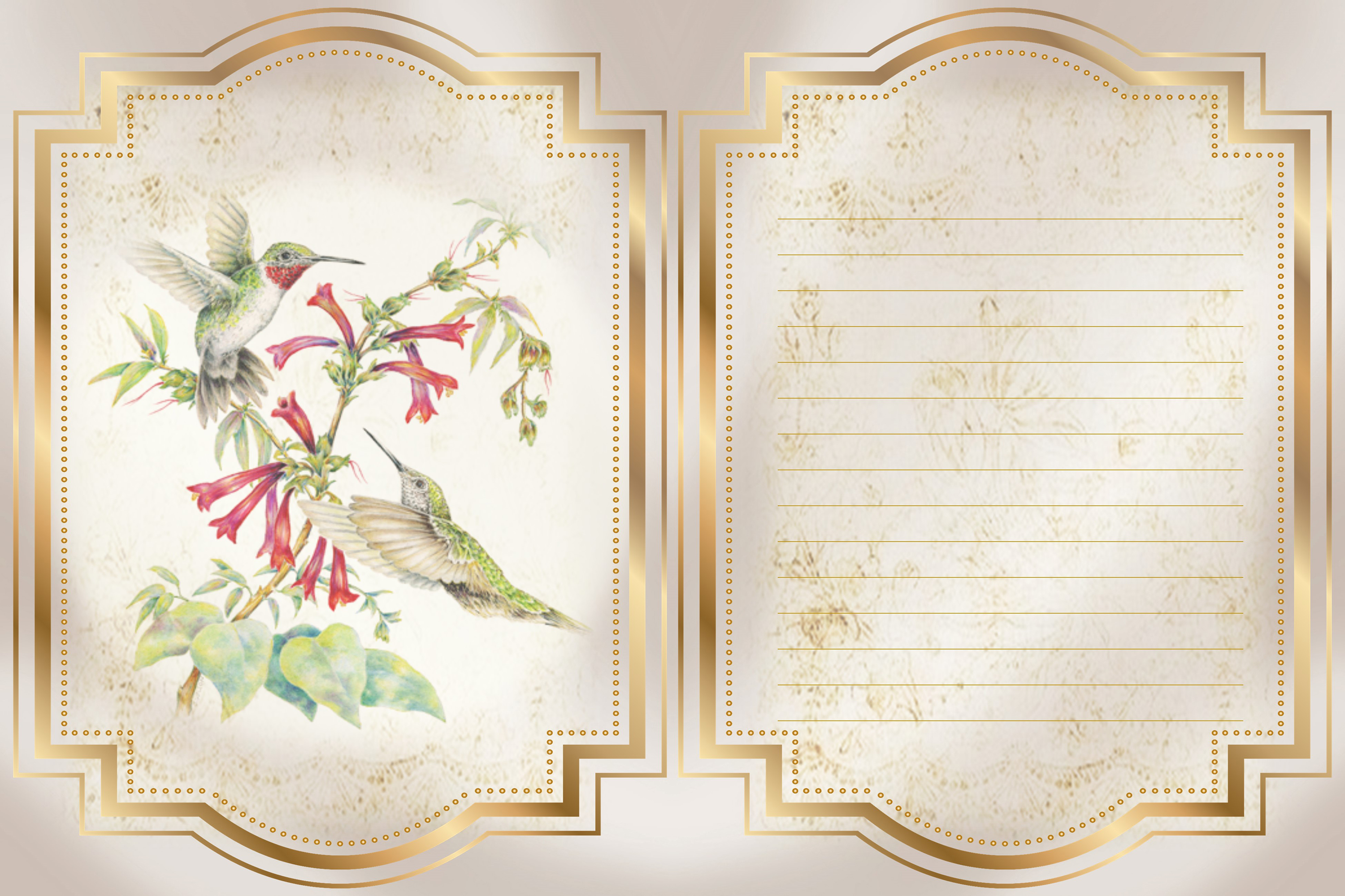 Hummingbird Journaling Kit Backgrounds Commercial Use example image 6