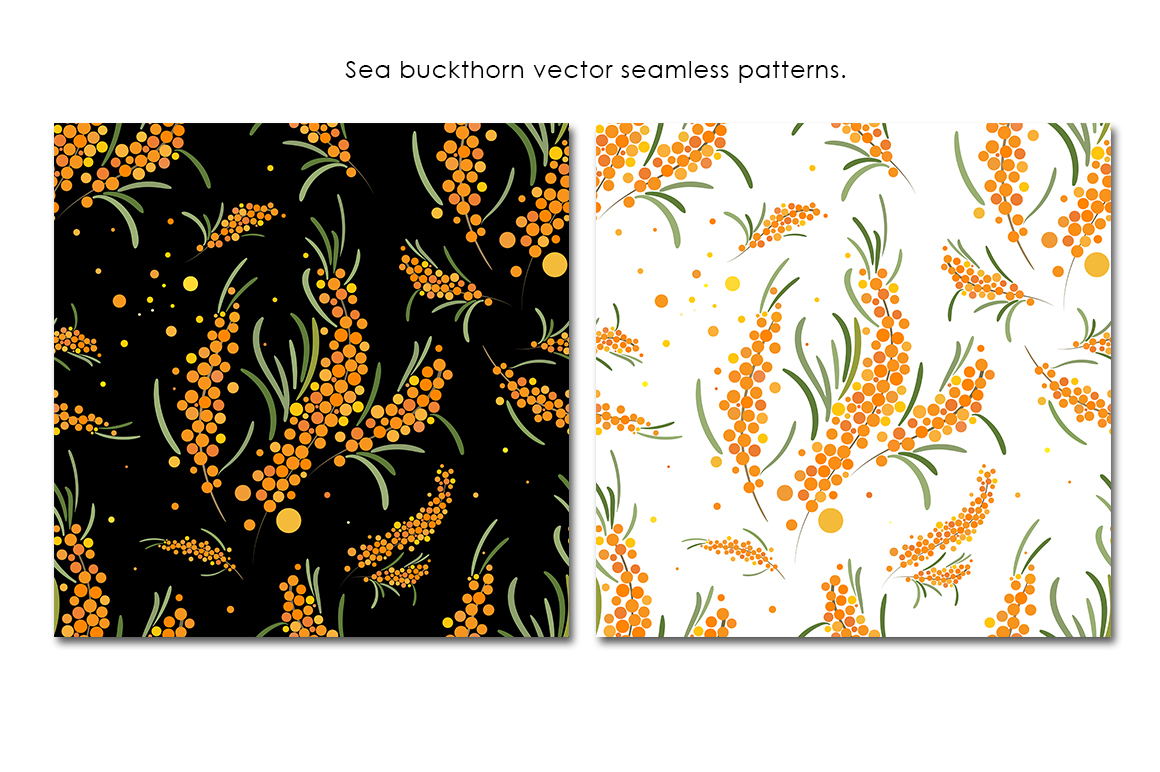 Sea buckthorn patterns set. example image 2