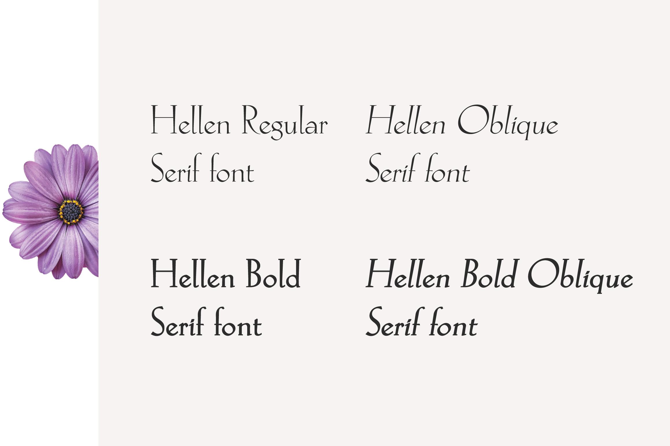 Hellen - Serif Font example image 2