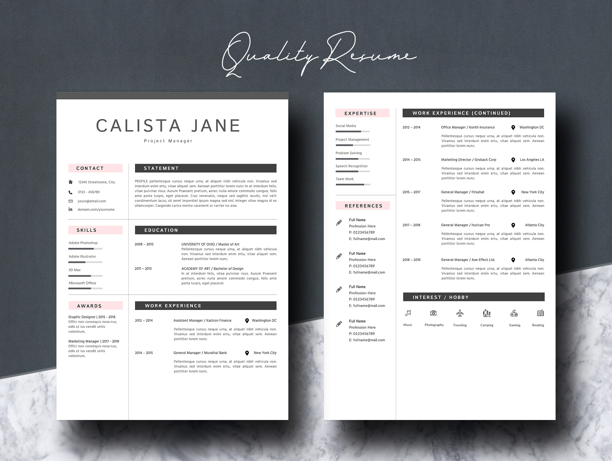 Resume Template 2 Pages example image 5