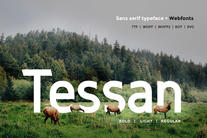 Ultimate Premium Font bundle example image 16