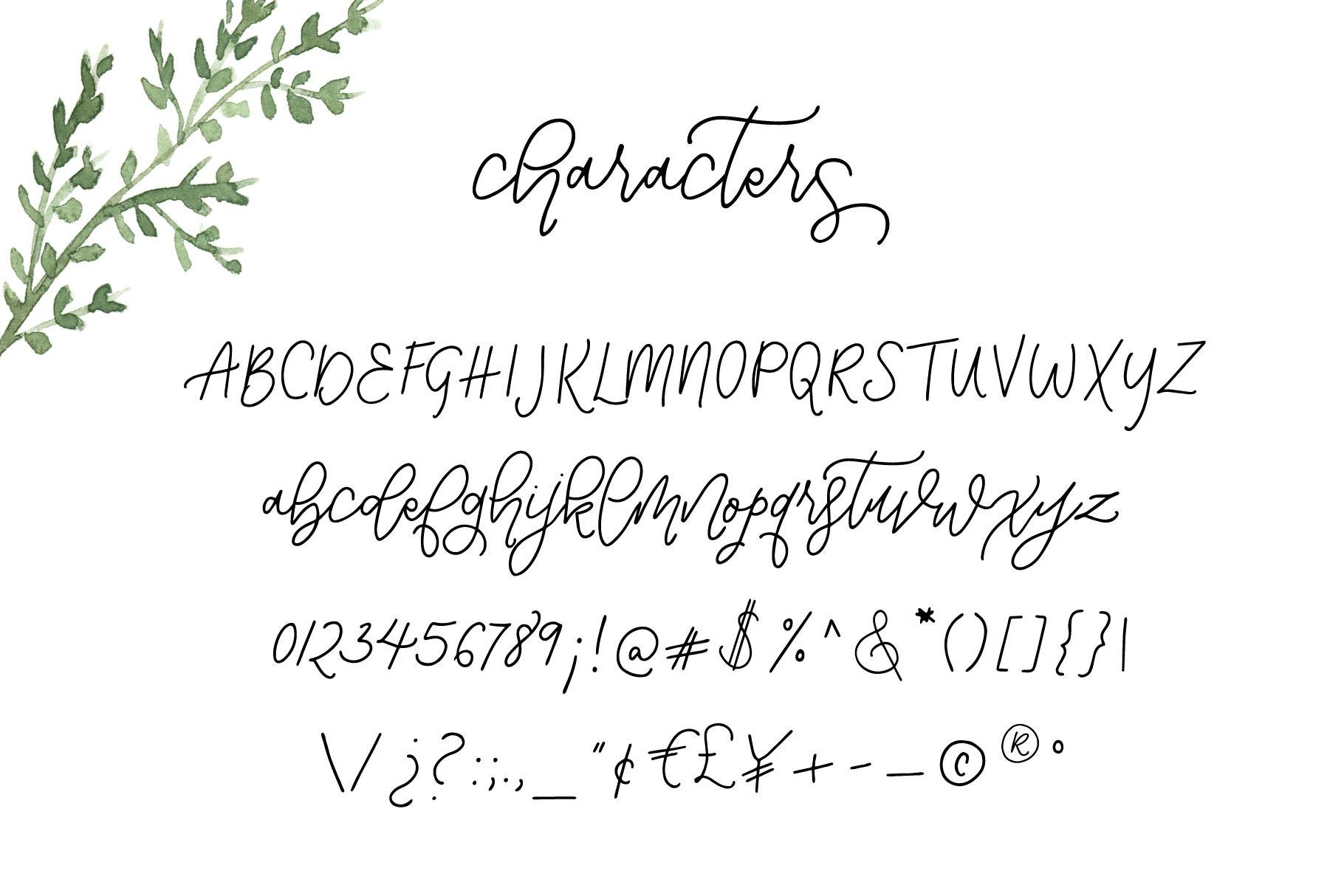 Notebook Script example image 10