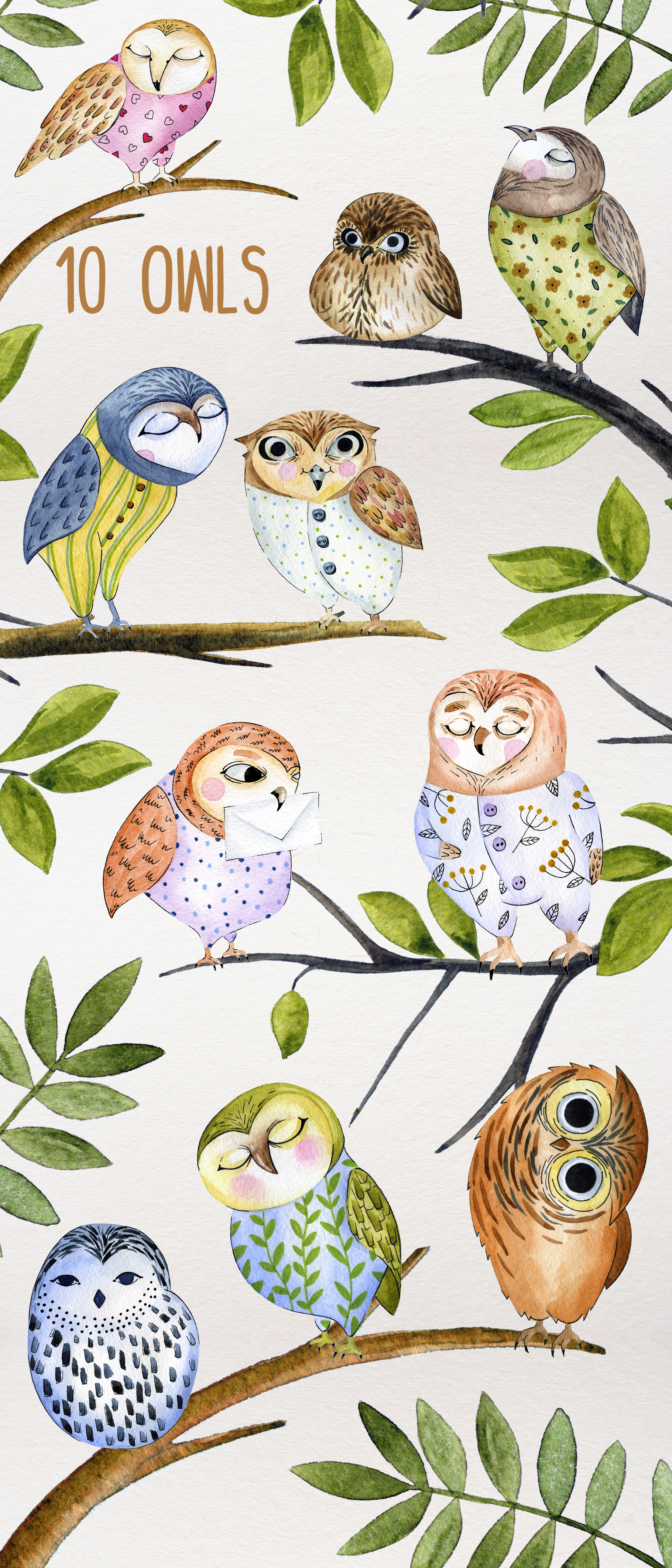 Friendly Owls example image 5