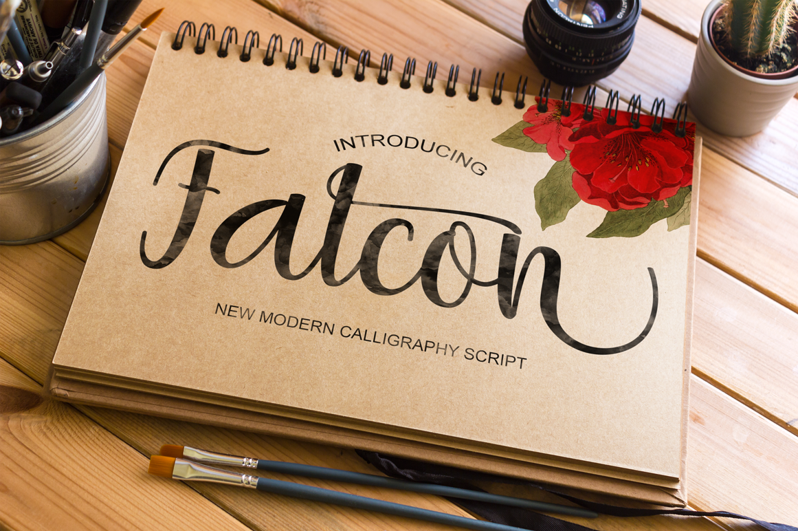Falcon example image 2