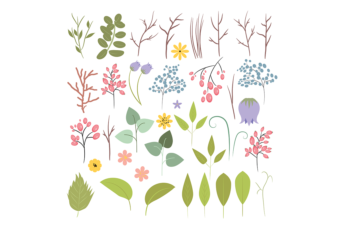 Flower collection. Vector set of plants, flowers and herbs. example image 2