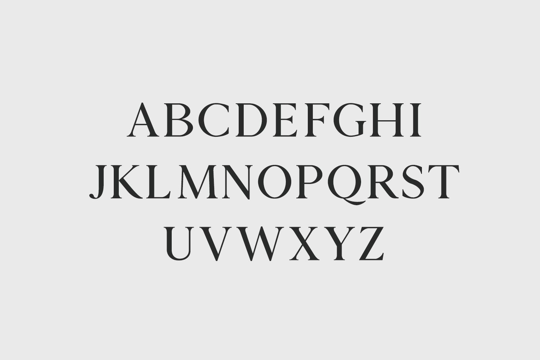 Zimra Serif Font Family example image 2