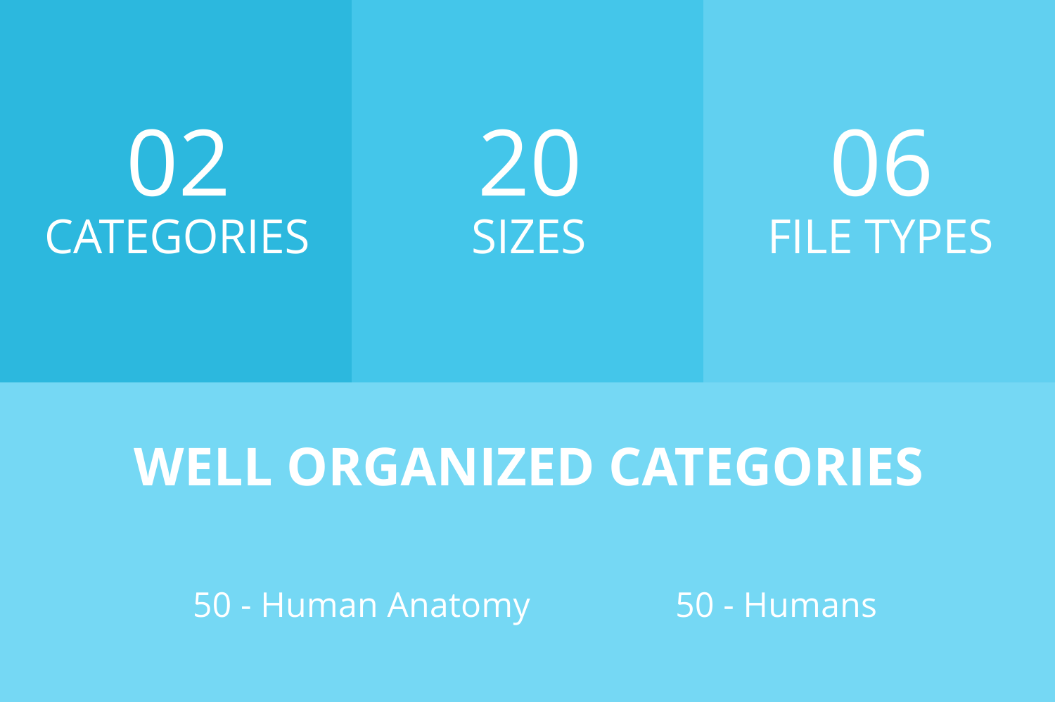100 Humans & Anatomy Filled Low Poly Icons example image 3