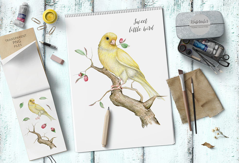 15%OFF. Watercolor Floral Collection example image 6