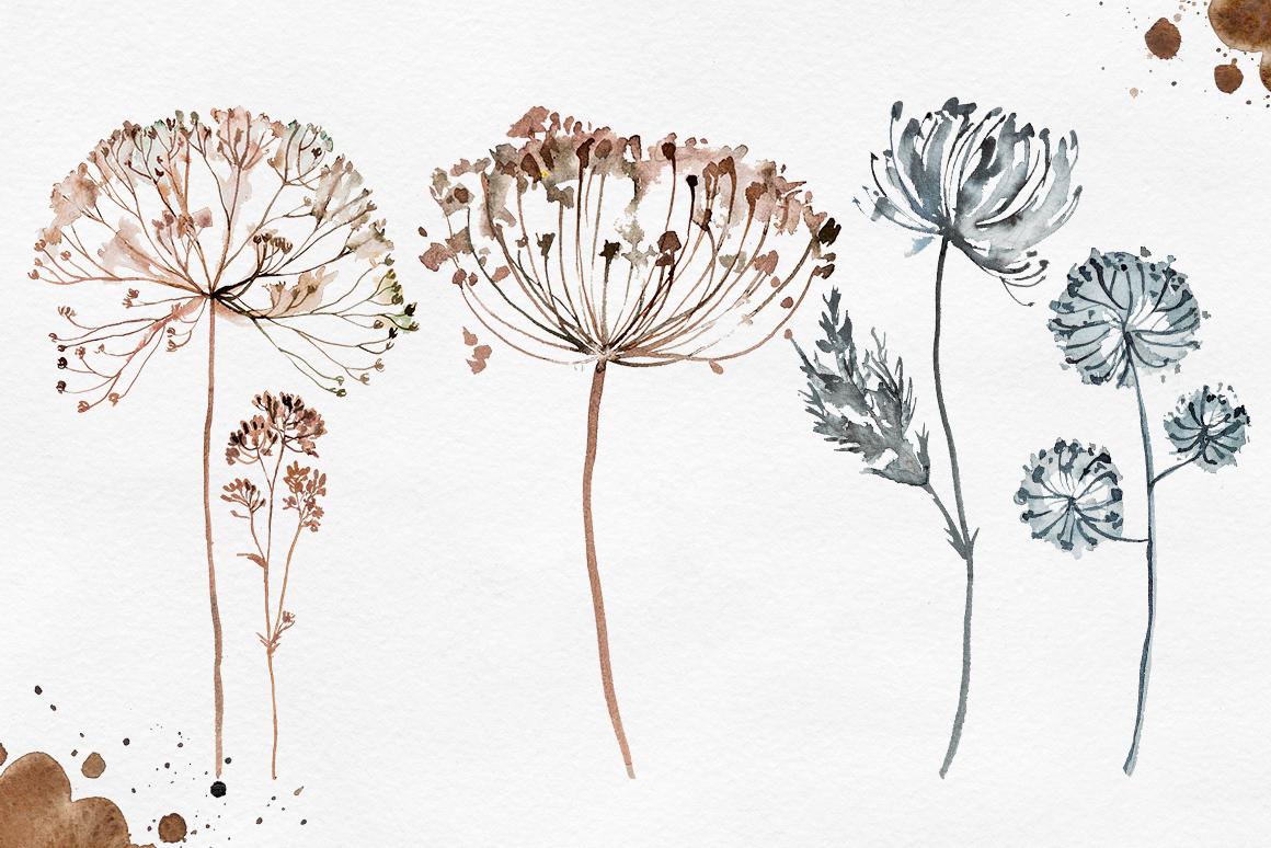 Herbarium Master Collection example image 8