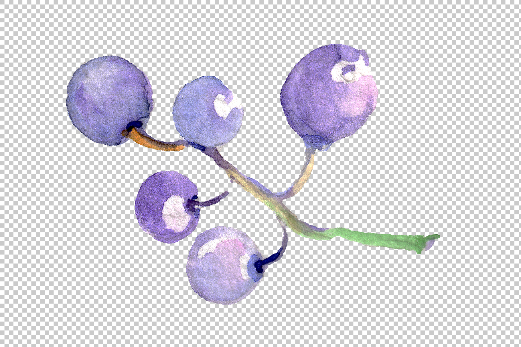 Grapes Watercolor png example image 7