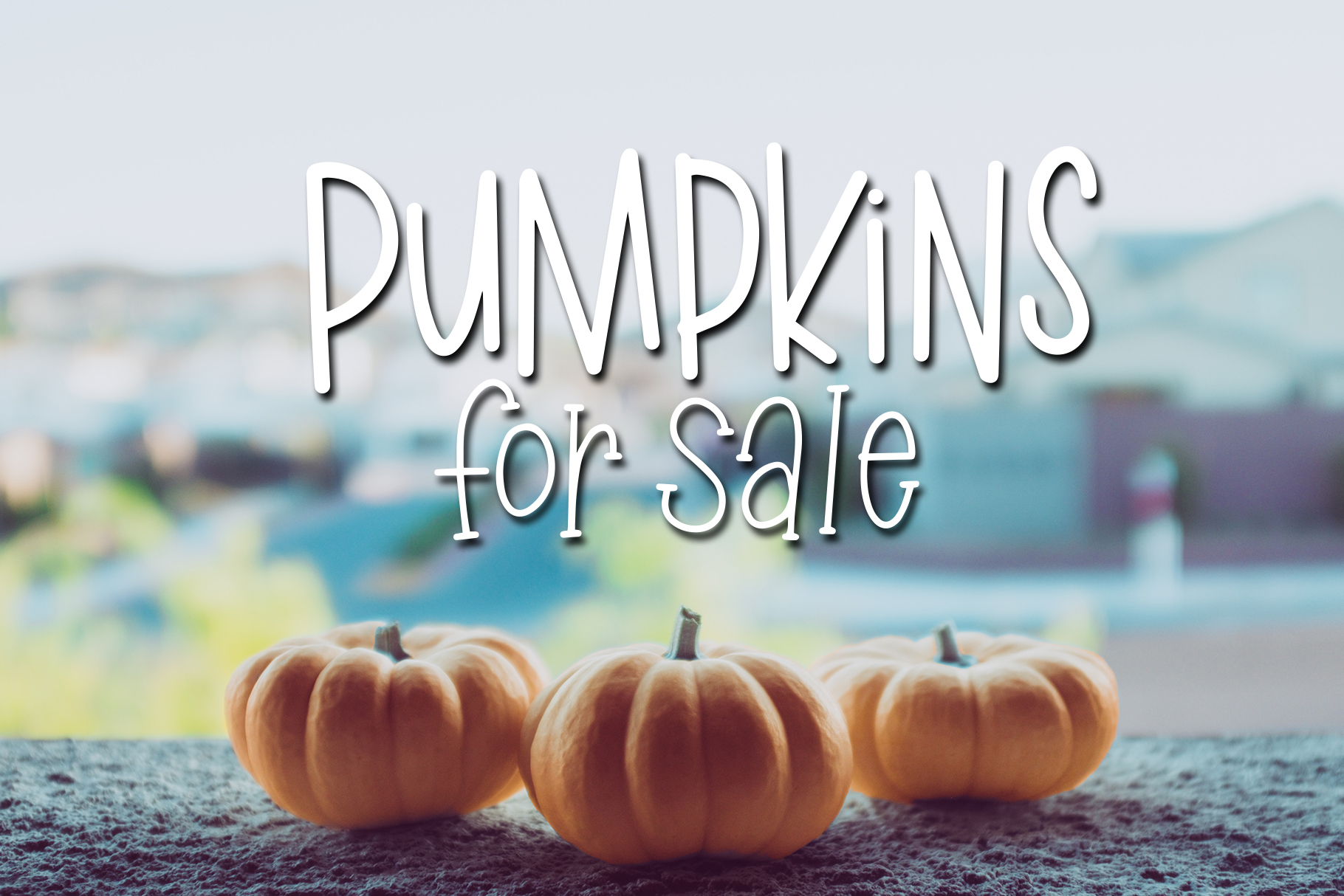 Fall Phrases Symbols Font example image 13