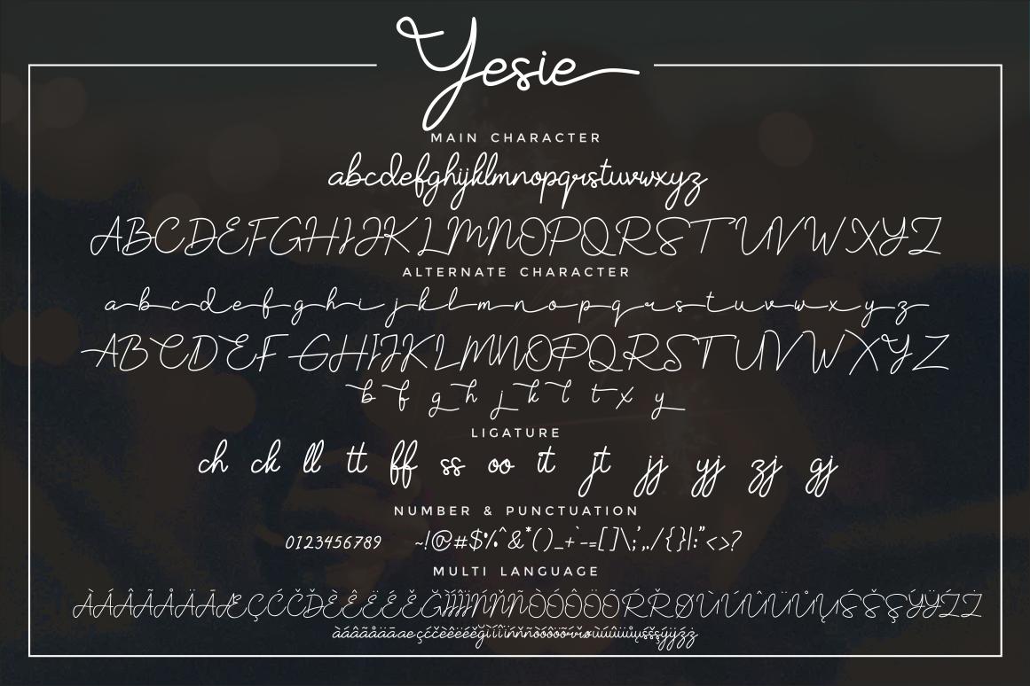 Yesie example image 3