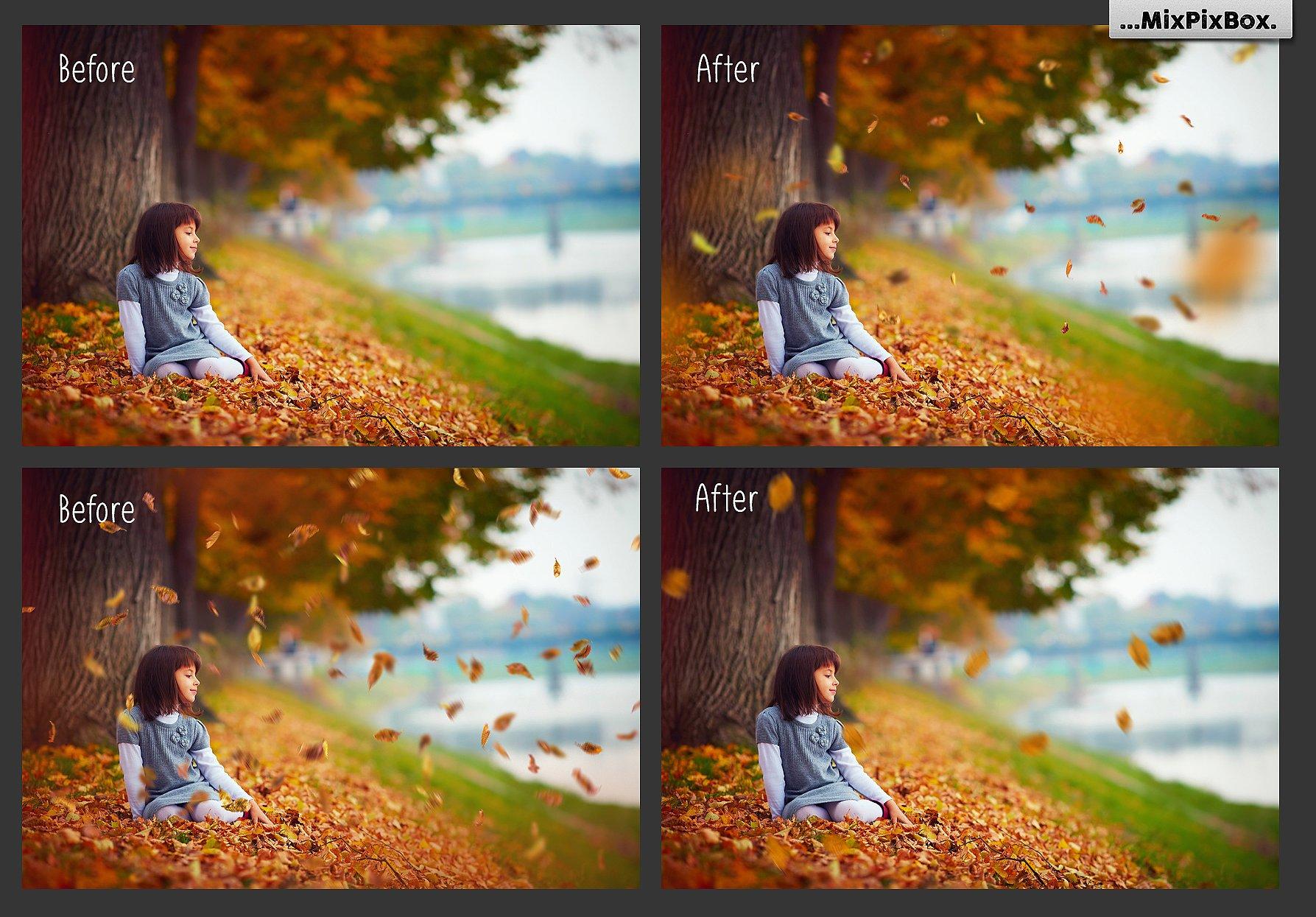 50 Autumn Leaves Overlays example image 2