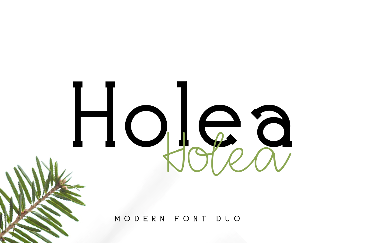 Holea example image 2
