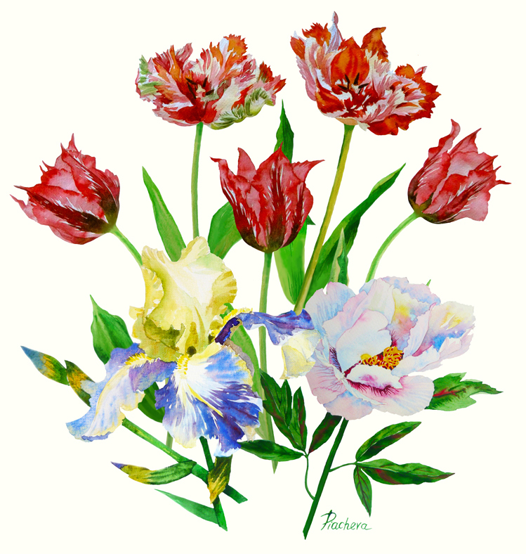 Bouquet with tulips, iris and peony example image 2