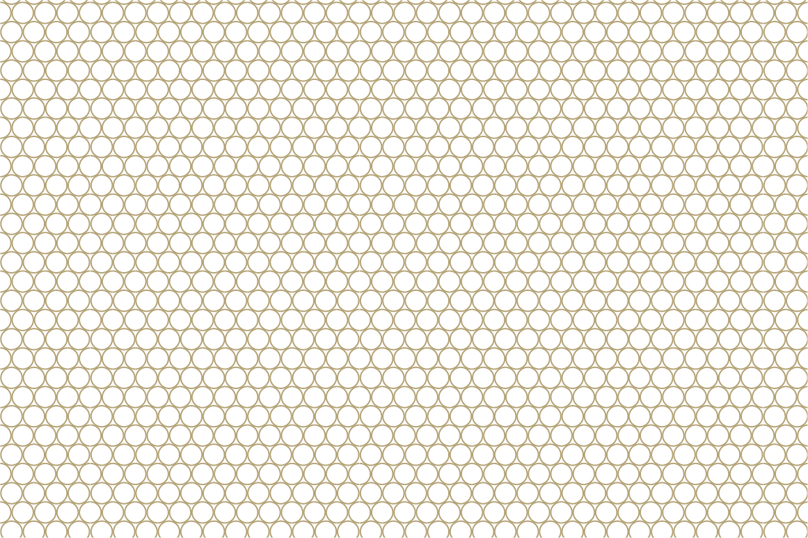 Ornamental seamless patterns. example image 12