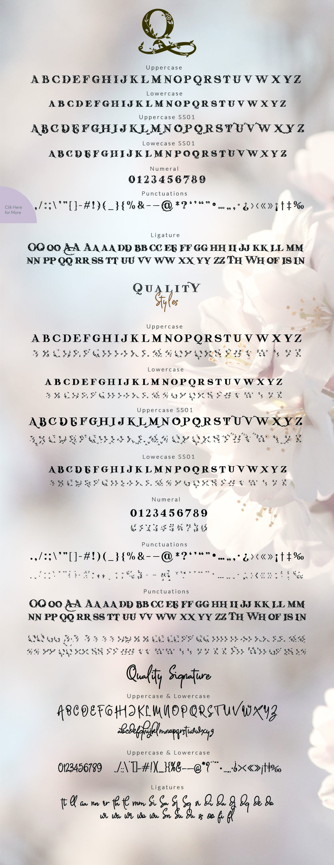 Quality Decorative Font Duo example image 8